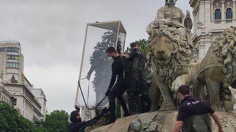 Detenidos 10 activistas de Greenpeace por subirse a la fuente de Cibeles con un árbol