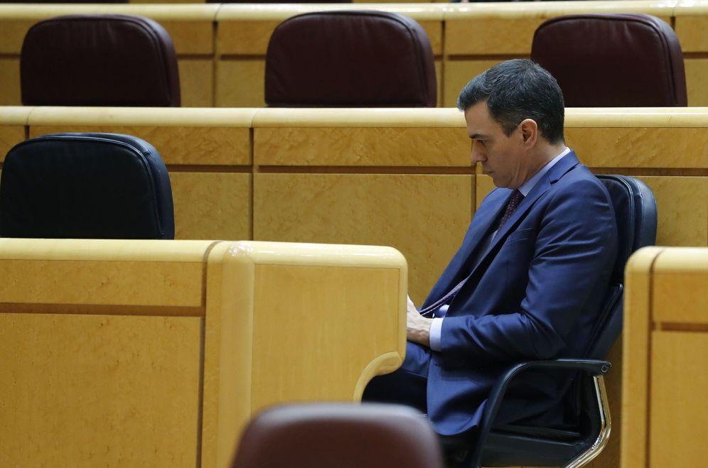 Foto: El presidente del Gobierno, Pedro Sánchez, este 5 de mayo en la sesión de control al Gobierno en el Senado. (EFE / Ballesteros)