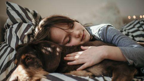 Los niños que duermen con mascotas tienen un sueño de mejor calidad