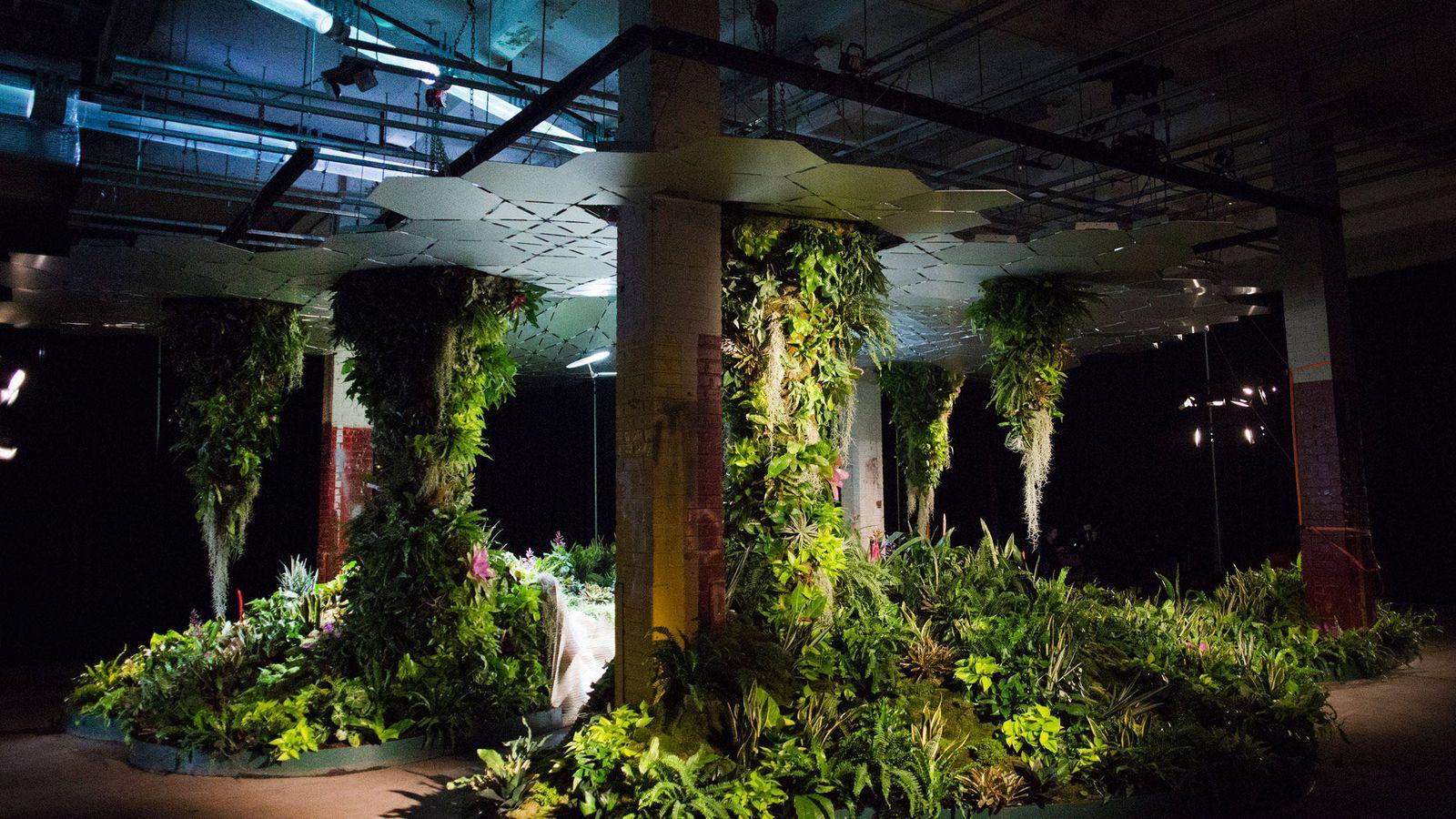 Foto: Dentro del Lowline Lab, el campo de pruebas para el primer parque subterráneo del mundo