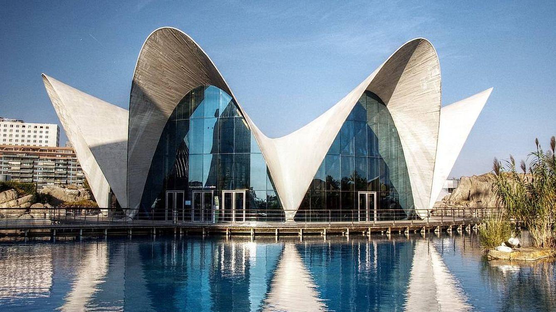 Valencia y Alicante, las mejores ciudades del mundo para vivir según los expatriados