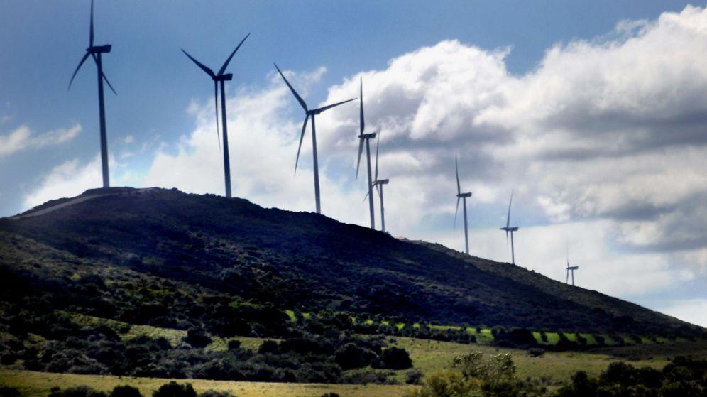 Foto: Imagen de un parque eólico. (EFE)