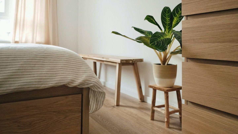 Decoración consciente para un hogar de espíritu mindfulness. (Thanos Pal para Unsplash)