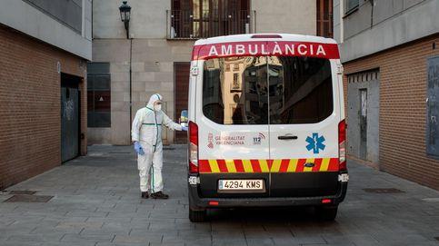 Una niña de 4 años, ingresada en Alicante tras ser atacada por un perro