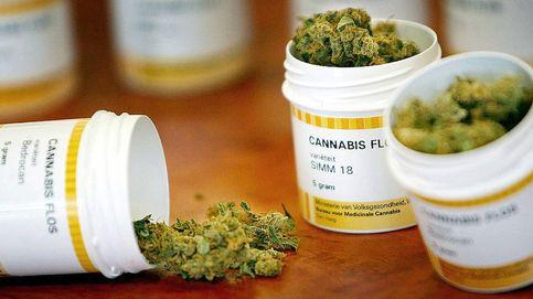 ¿Qué quiere hacer el PSOE con el cannabis? Su postura es bastante contradictoria