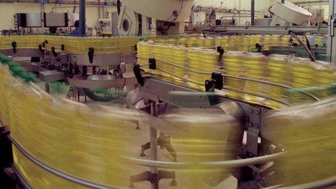 Rebelión de los aceiteros por el etiquetado que equipara el aceite de oliva y el de colza