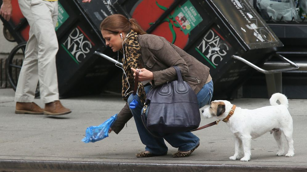 Foto: La princesa Magdalena limpiando la acera después de que su perro hiciera sus necesidades (Gtres)