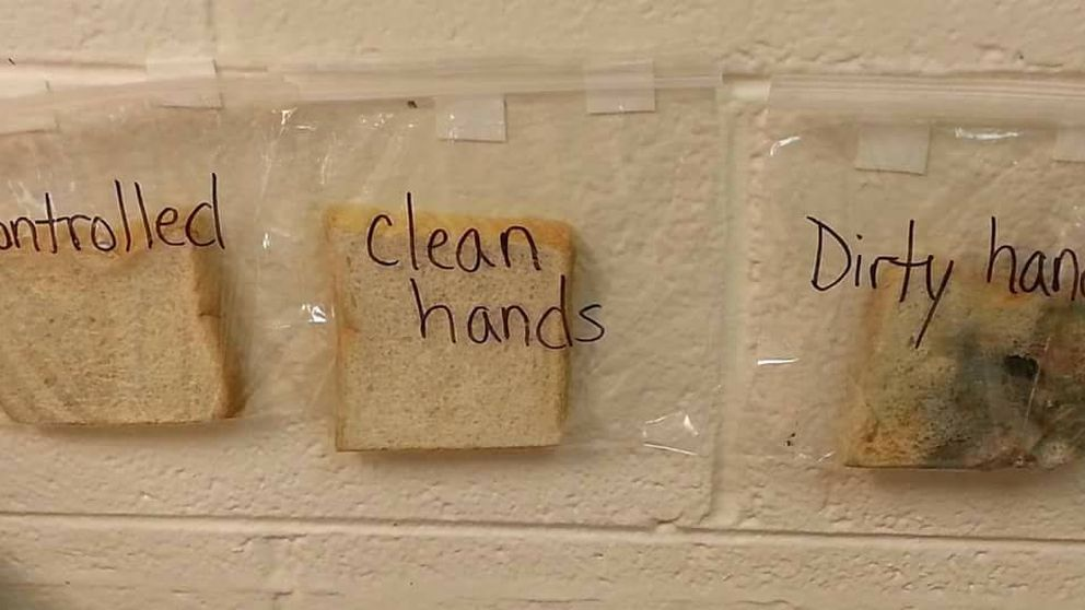 Con esta foto tus hijos siempre se lavarán las manos antes de comer