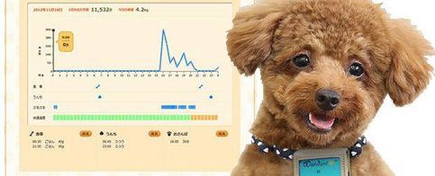 El arma secreta de Fujitsu: ¡un podómetro para perros!