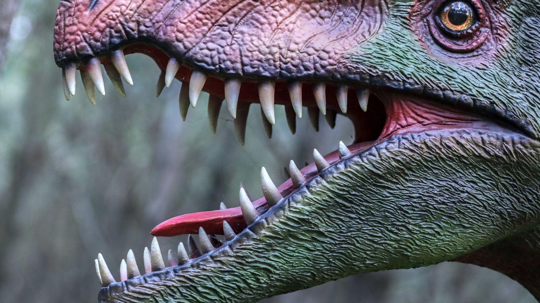 Enormes o pequeños: esta es la razón por la que no hubo dinosaurios 'medianos'