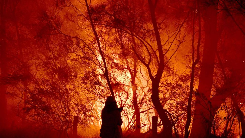 Foto: Incedios en Australia. Foto: EFE EPA DEAN LEWINS