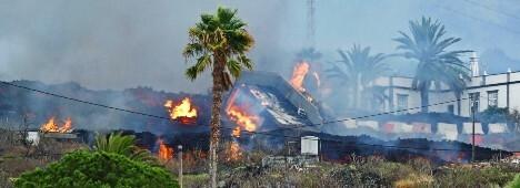 Foto de ¿Arrasados o recuperables? Qué pasará con los terrenos devastados