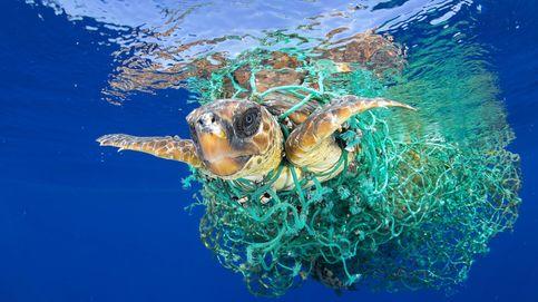 Pesca fantasma: cómo matar el mar a cambio de nada