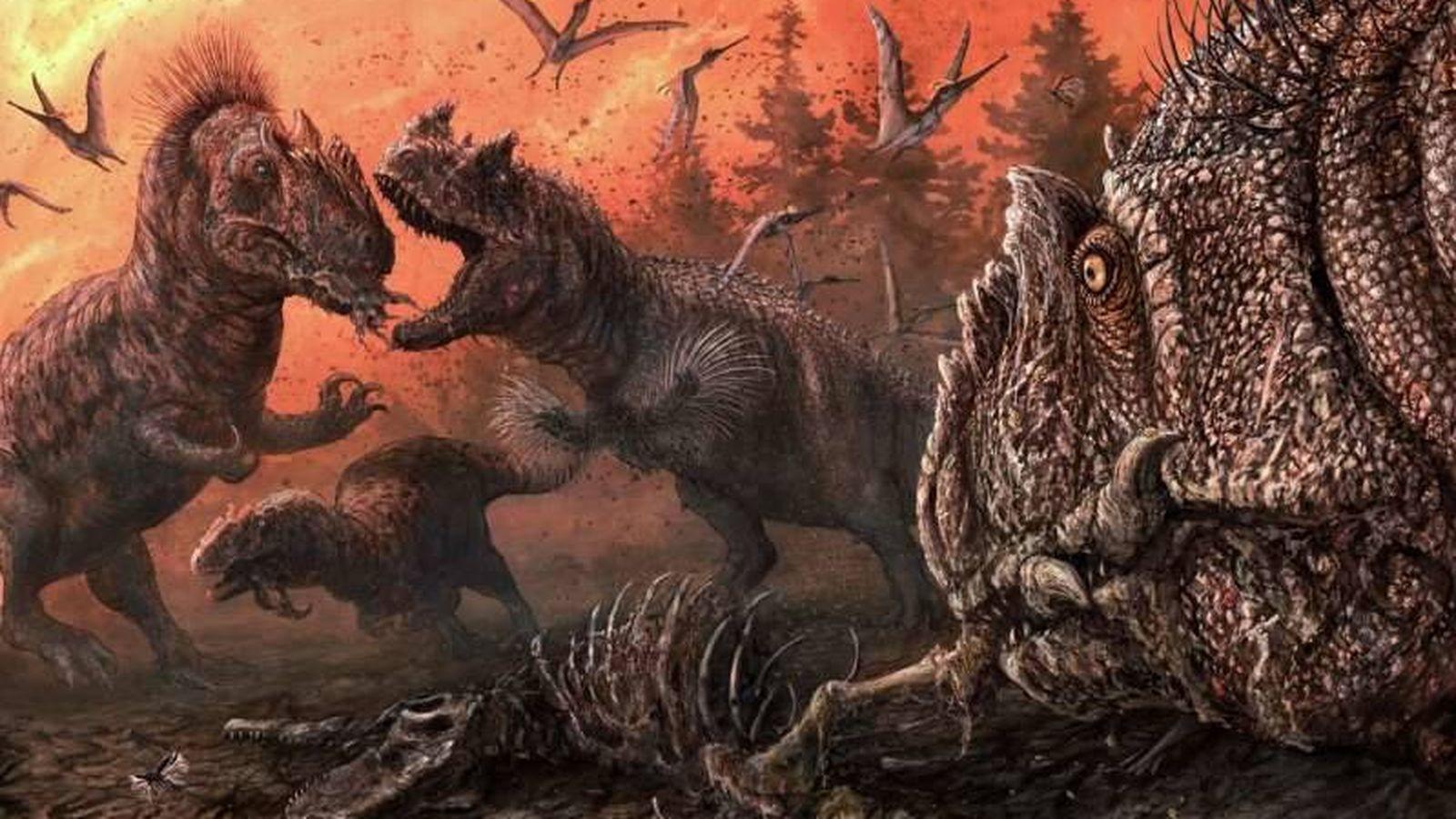 Animales Un Estudio Revela Que Los Dinosaurios Eran Canibales En Epocas De Crisis © 2020 cable news network. estudio revela que los dinosaurios eran