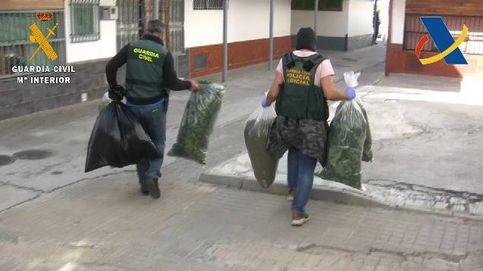 Cae una red criminal que blanqueaba dinero con la venta de marihuana