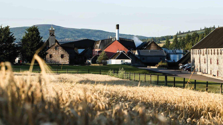 Foto: Imagen de la destilería, con los cultivos de cebada en primer plano.