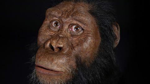 Empezamos a hablar hace más de 25 millones de años, según un estudio