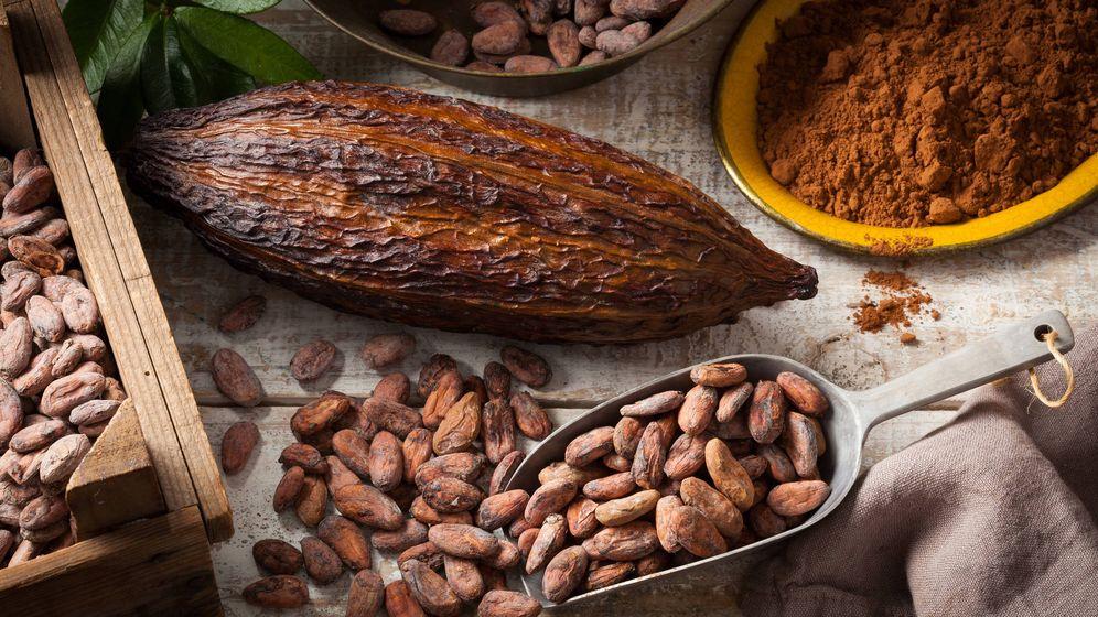 Foto: El chocolate y el cacao no son lo mismo y sus beneficios tampoco son iguales. (iStock)