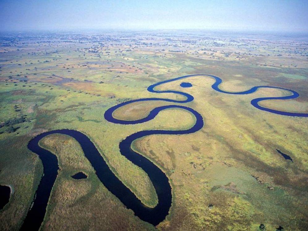 Foto: El delta del Okavango, el lugar en el que, según un nuevo estudio, procede el ser humano moderno.