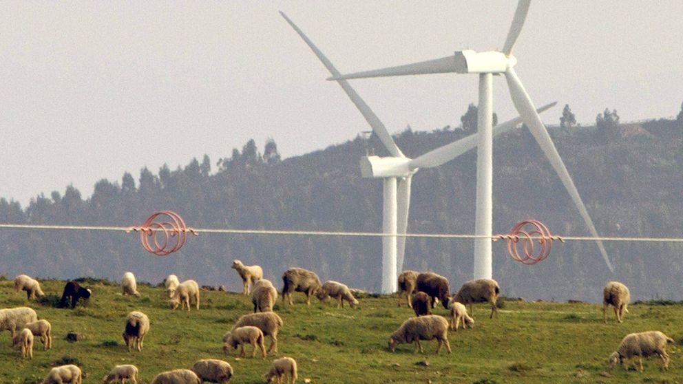 Parte del complejo eólico de 'El Andévalo'. (EFE)