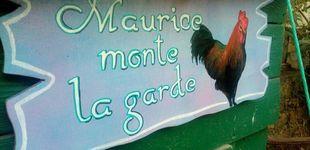Post de Veraneantes contra un gallo: el pueblo que se rebeló para defender lo rural
