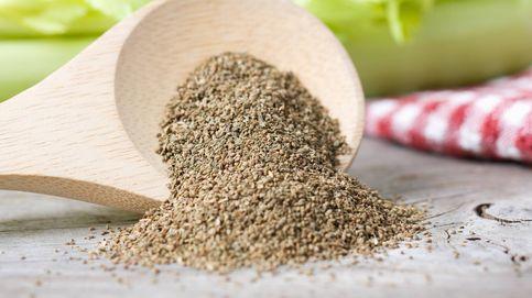 Semillas de apio: grandes aliadas a nivel nutricional y gustativo