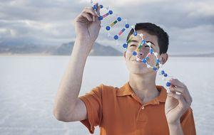 Se publica el primer 'manual de instrucciones' del genoma humano