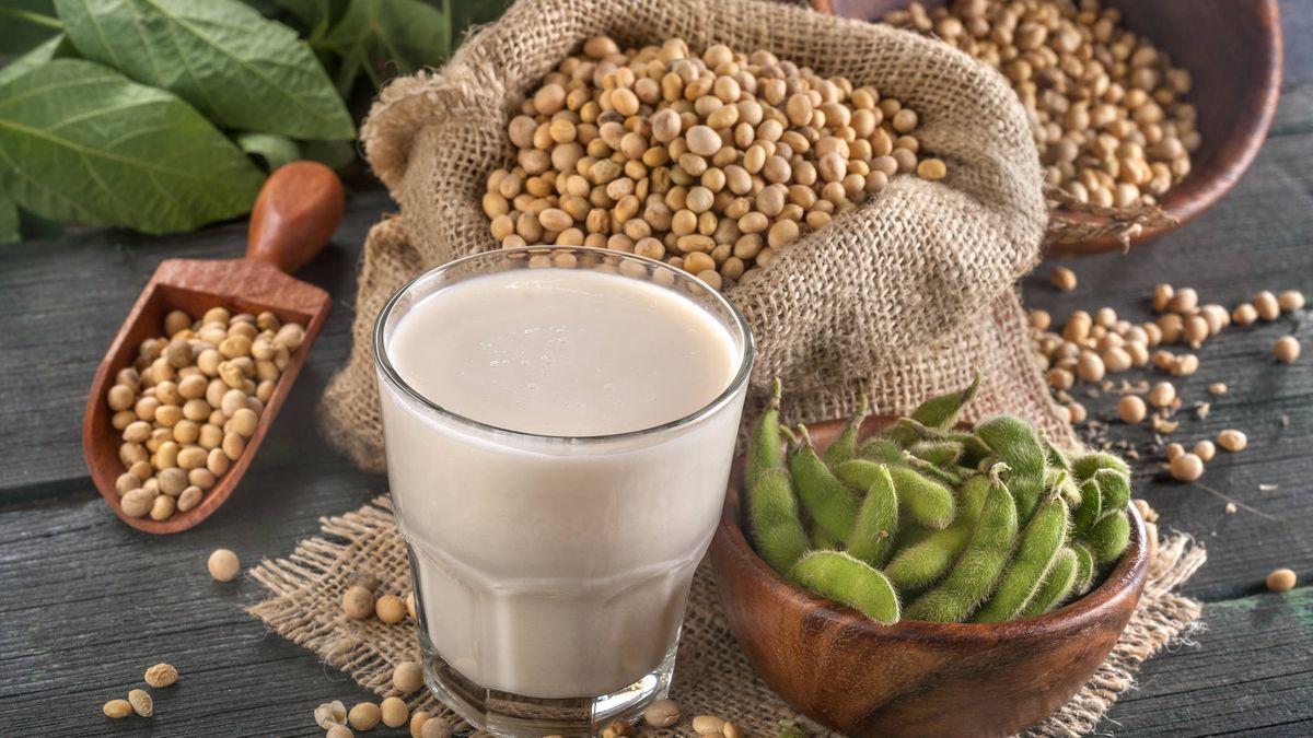 La soja puede mejorar la fertilidad
