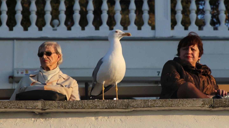Dos mujeres en Sevastopol, en Crimea. (Reuters)