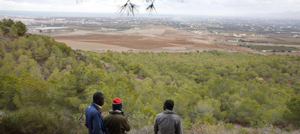 Foto: Inmigrantes subsaharianos observan Melilla desde un campamento clandestino en la frontera de Marruecos (Reuters).