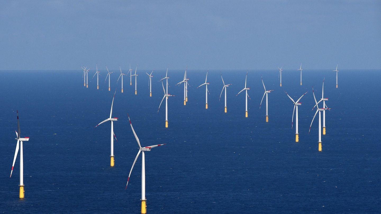 Aerogeneradores cercanos a la costa danesa. (EFE)