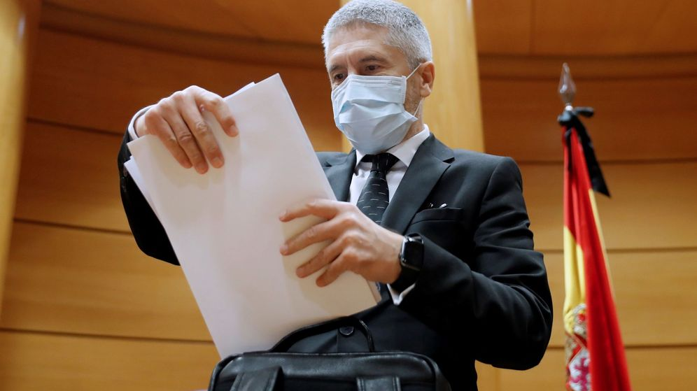 Foto: El ministro del Interior, Fernando Grande-Marlaska, el pasado viernes en el Senado. (EFE)