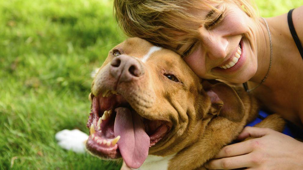 Por qué tu perro se alegra tanto de tu vuelta a casa (aunque hayas estado fuera años)