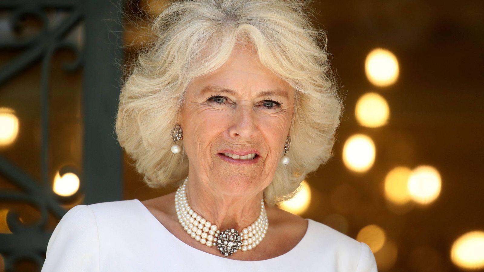 familia real britanica por que camilla no es conocida como princesa de gales a diferencia de diana princesa de gales