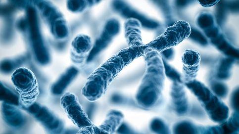 Por qué los hombres están perdiendo el cromosoma Y: los riesgos