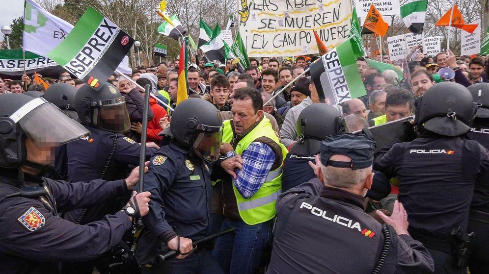 Foto: Incidentes entre la Policía y los agricultores en Don Benito, el miércoles. (EFE)