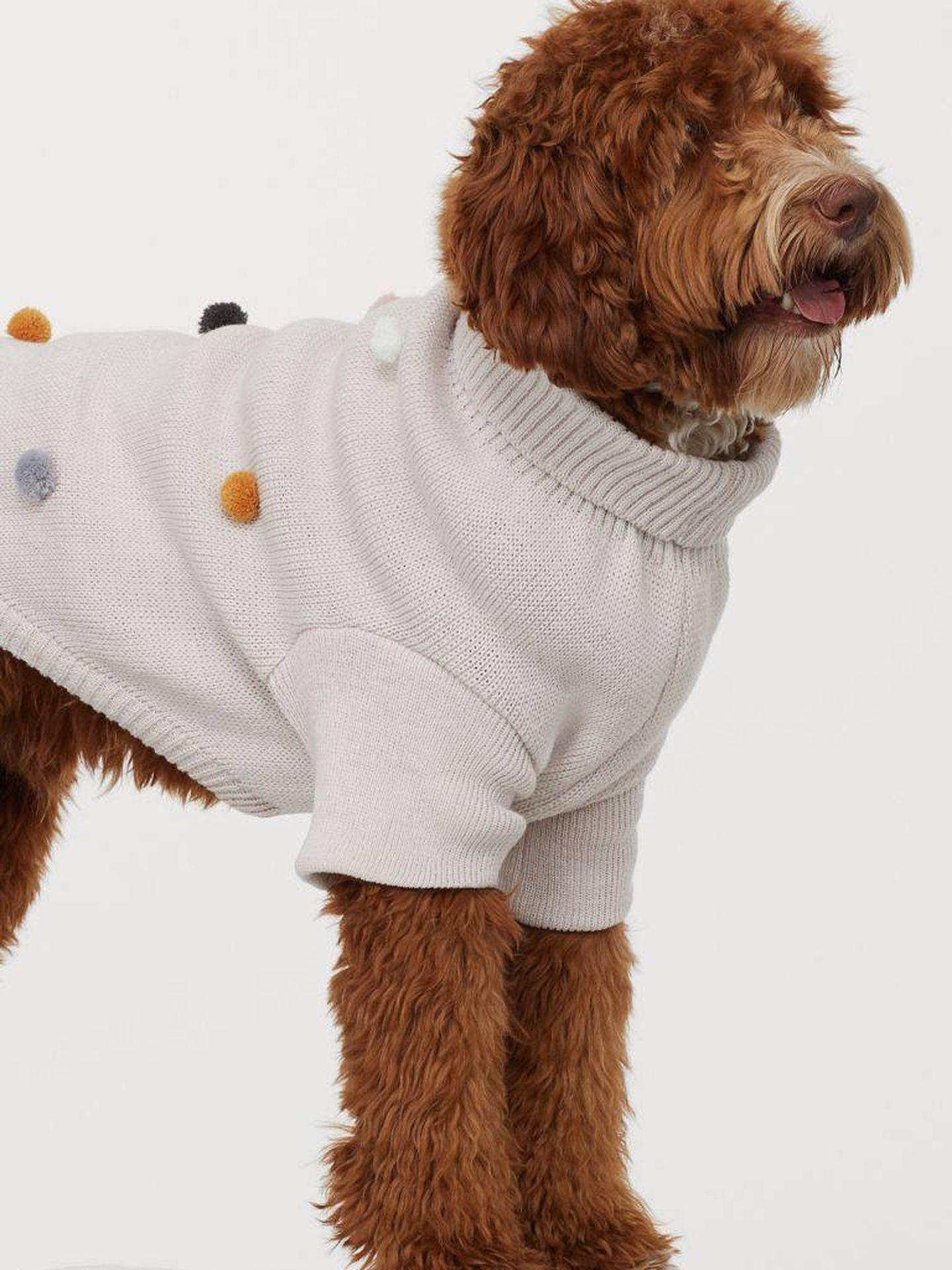 Un jersey para perros de HyM. (Cortesía)