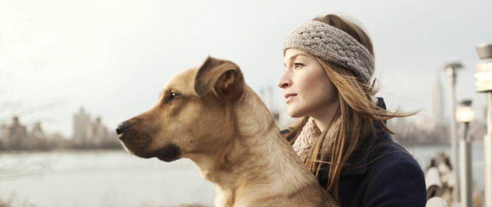 Mejores lugares para viajar con perro