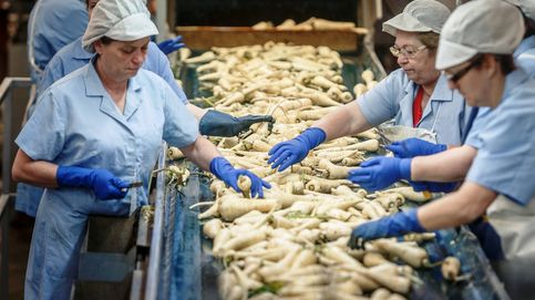 'Living Las Lomas', así  es el vergel agroindustrial de los Mora-Figueroa