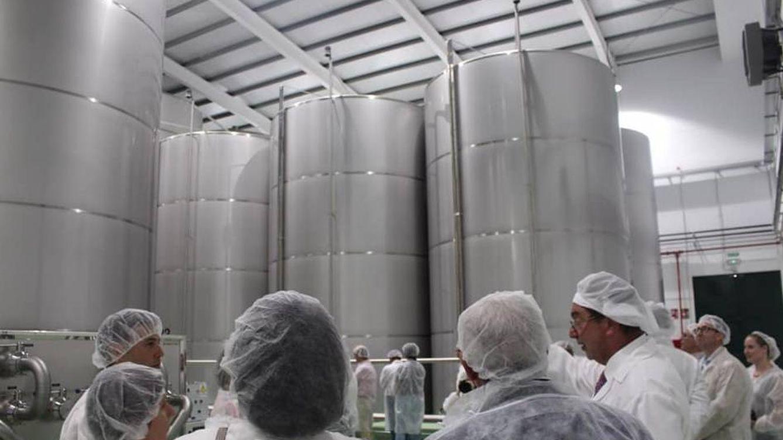 El gigante Glencore compra una planta en Jaén y entra en el sector aceitero andaluz