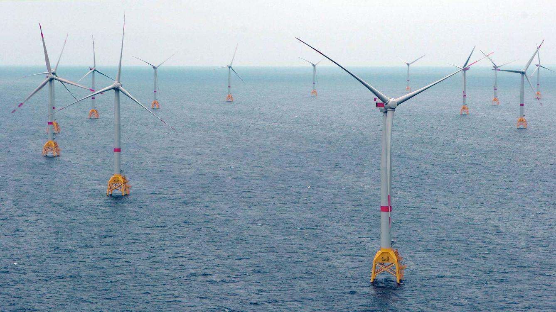 La Eurocámara aprueba con apoyo masivo elevar al 35% la energía renovable en 2030