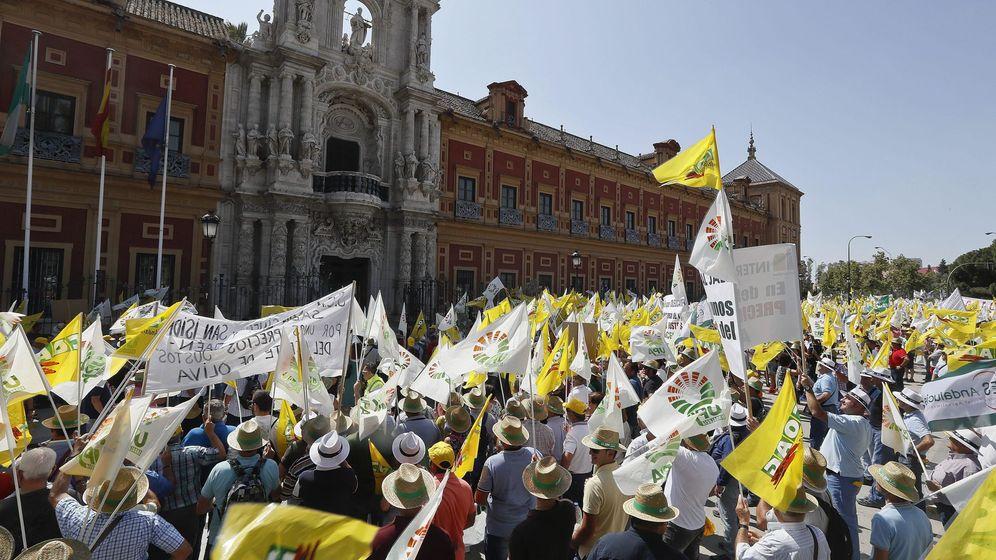 Foto: Los manifestantes, ante la sede de la Junta de Andalucía. (EFE)