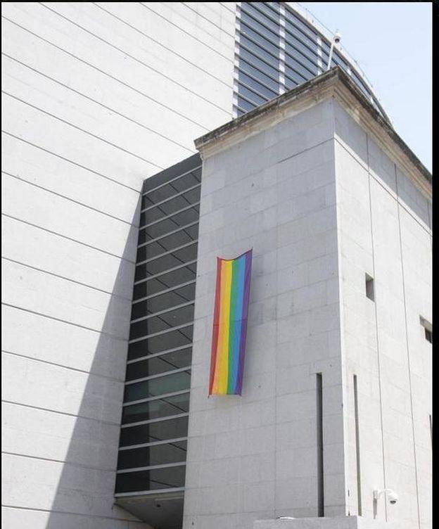 Foto: La enseña, una banderola de 4,20 metros de largo por 1,20 de ancho, se ha colocado en la fachada de edificio. (CONGRESO)