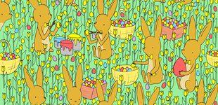 Post de El último acertijo visual: ¿eres capaz de encontrar el pollito entre tantas flores?