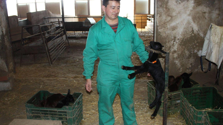 Manuel, en la granja de cabras murcianas de Jumilla. (R. M.)