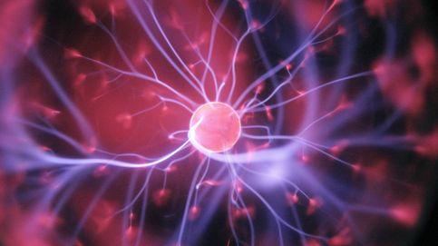 """Senescencia celular: las células que se convierten en """"zombis"""" y nos envejecen"""
