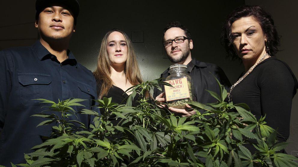 """""""Refugiados de la marihuana"""": padres que curan a sus hijos con cannabis"""