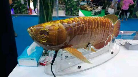 No te asustes pero… no es un pez: es un dron submarino del ejército chino