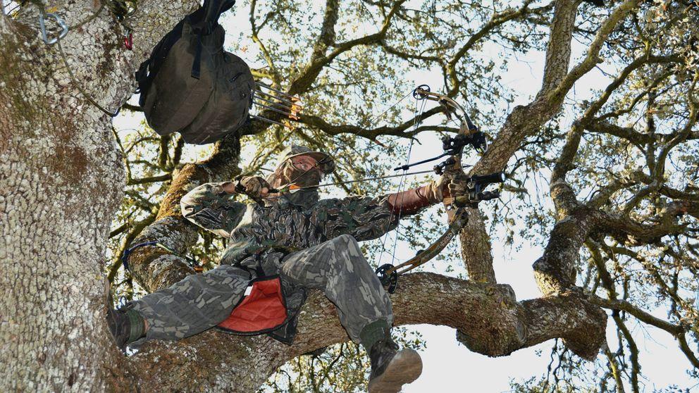Los 55 Robin Hood de Madrid: arcos para 'controlar' a los jabalíes