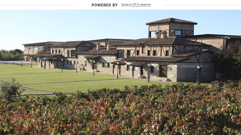 Los vinos de Ribera del Duero que compiten con los prémium en el extranjero